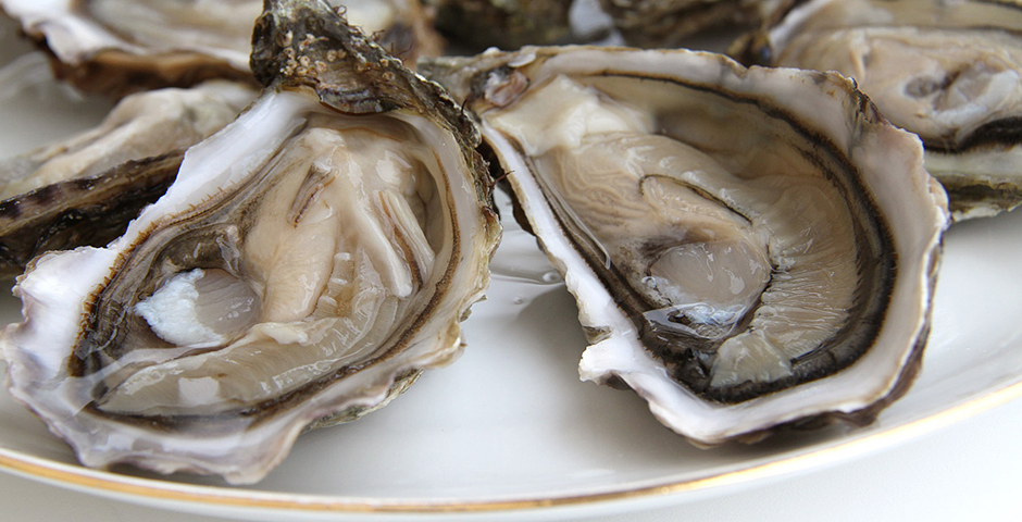Shop (Oysters of Bouzigues)